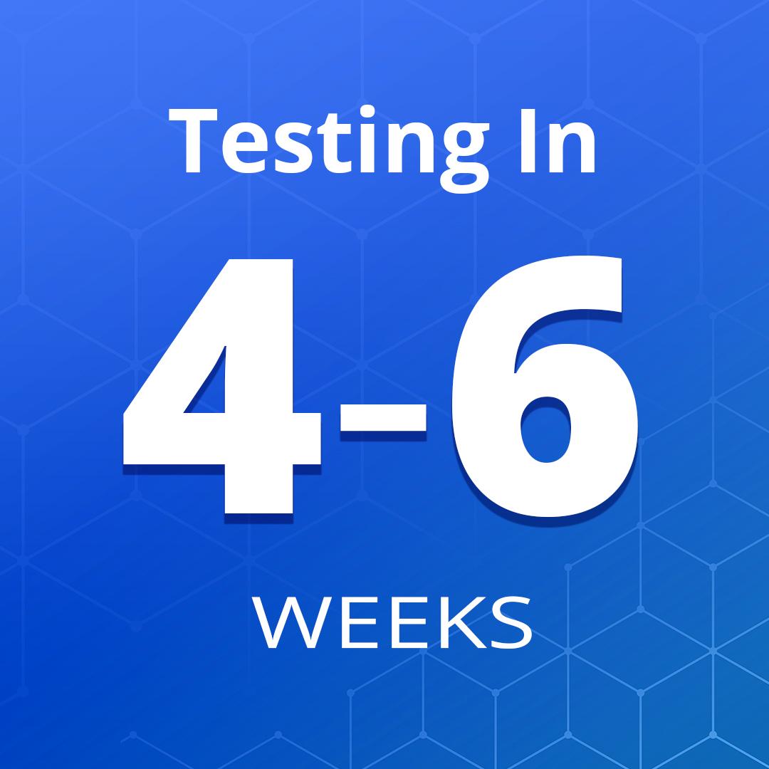 Exam Prep Bundle: 4-6 Weeks