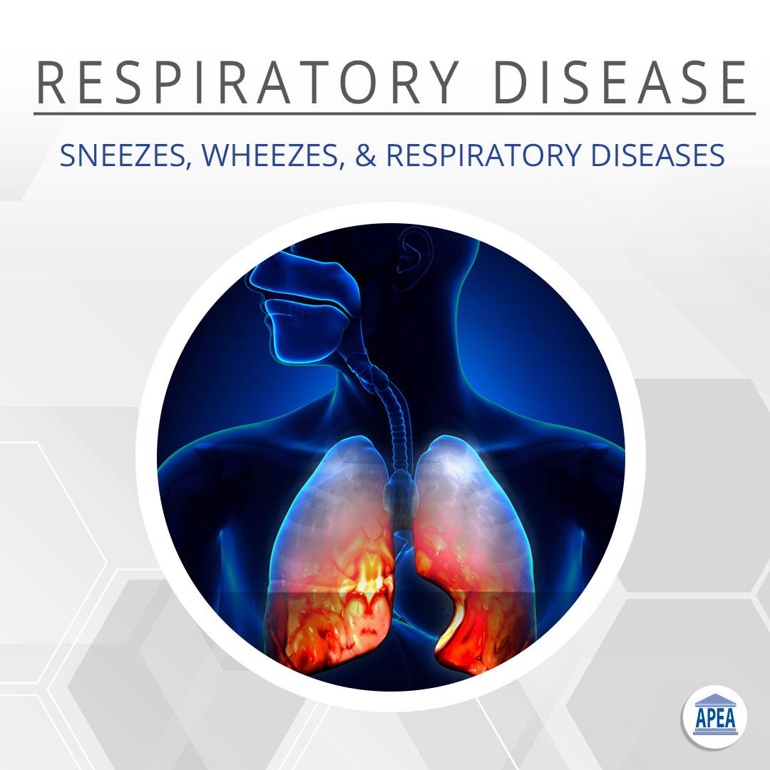 Sneezes, Wheezes & Respiratory Diseases
